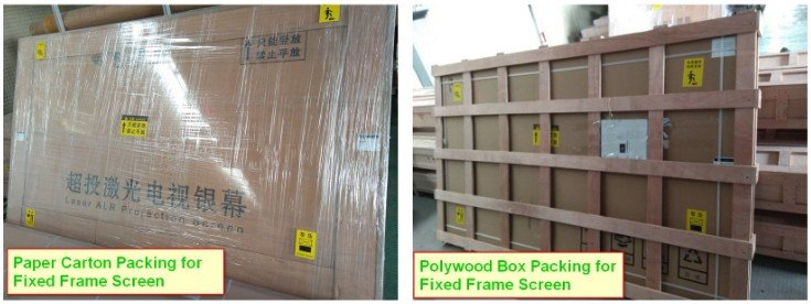 XY Screens-Find Fresnel Projector Screen For Ust Projector Inp-fne | Manufacture-3