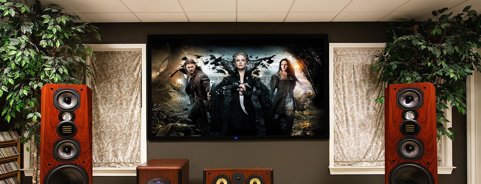 category-Large Cinema Fixed Frame Projection Screens | Find Projector Screen-XY Screens-img