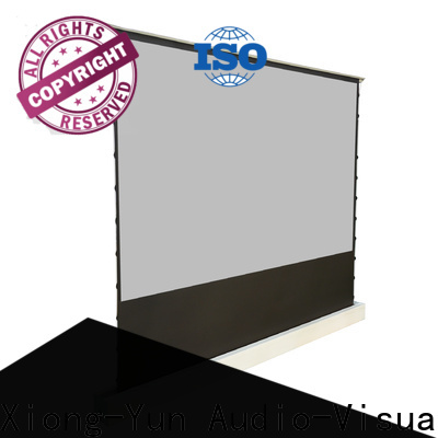 rising projection screen price design for household