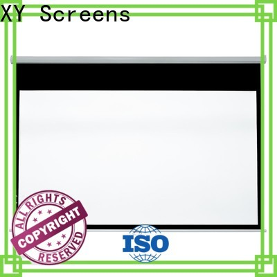 vivid pull down screen with good price for students