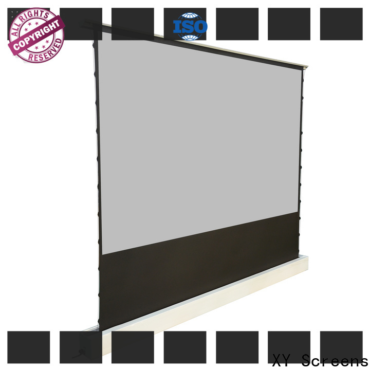 XY Screens manual projection screen price with good price for living room