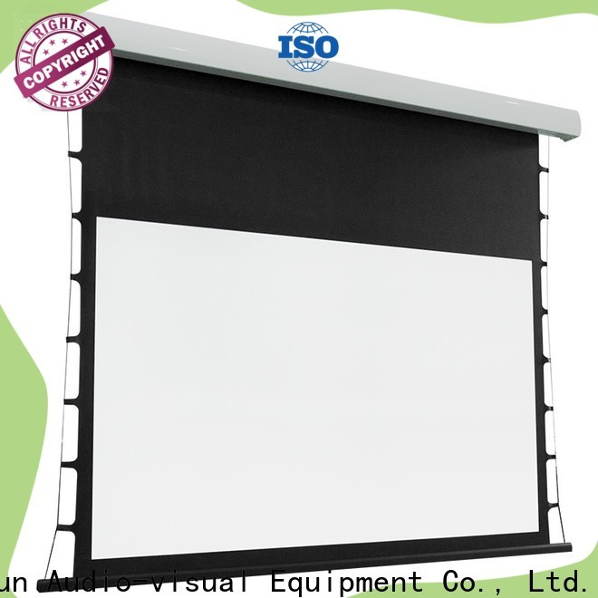 XY Screens tab tensioned projector screen factory price for home
