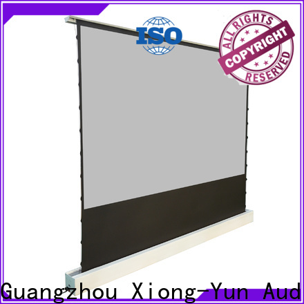 XY Screens portable pull up projector screen design for household