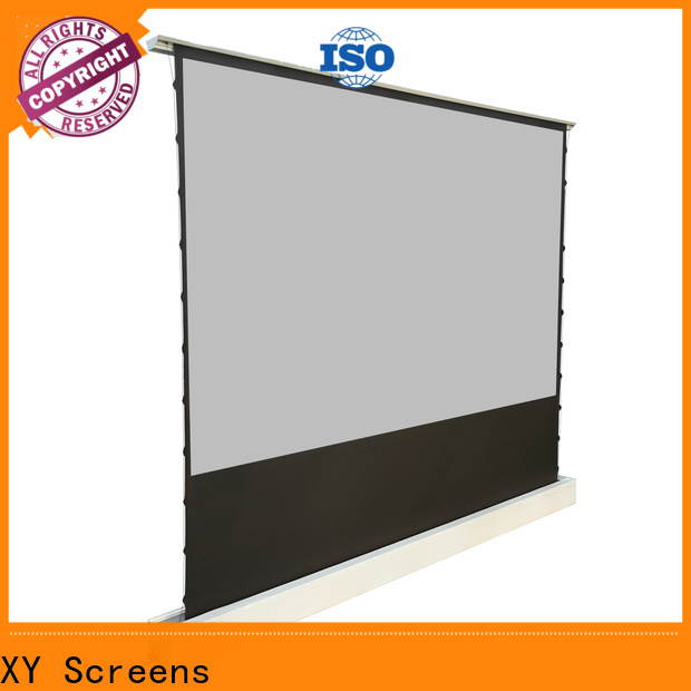 XY Screens projection screen price with good price for living room