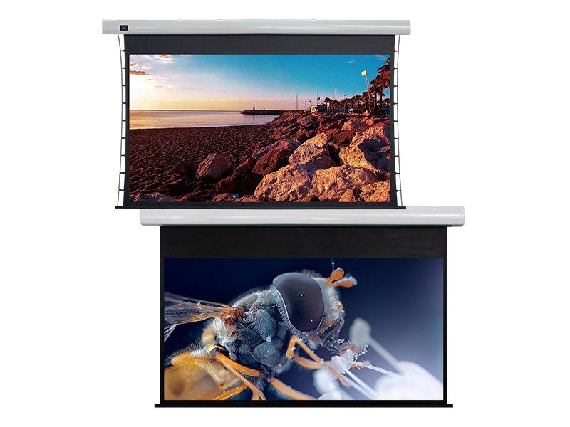 XY Screens Array image2