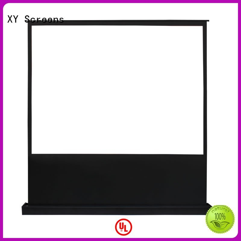 Wholesale screen pull up projector screen XY Screens Brand